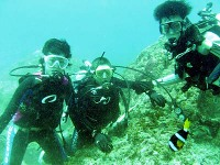 Diving_2